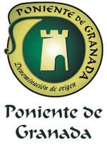 El aceite de Oliva - Poniente de Granada